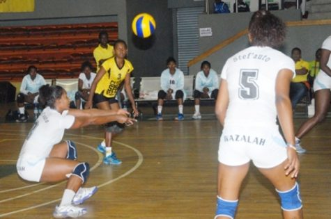 Volleyball stefauto