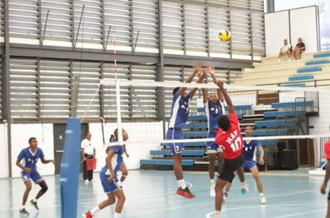 volley GNVB