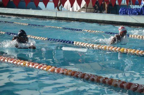 championnat de madagascar de natation