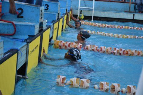 natation vive l'avenir